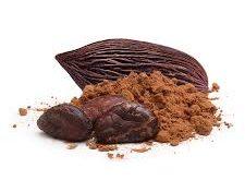 پودر کاکائو شیرین عسل
