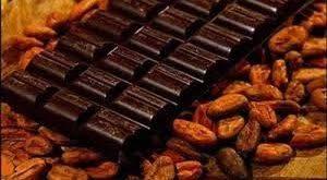 کارگاه تولیدی کاکائو