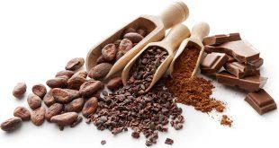 فروش پودر کاکائو اسپانیا