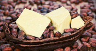 تولید انواع کره کاکائو اصل