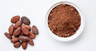خرید انواع پودر کاکائو فله ای بدون شکر