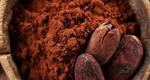 خرید عمده پودر کاکائو کیلویی مالزی