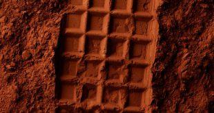 فروش بهترین نوع پودر کاکائو کیلویی هلندی